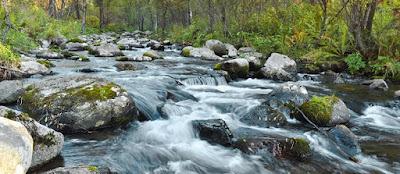 Suara Air Sungai Mengalir