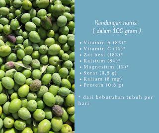 Kandungan nutrisi buah Zaitun