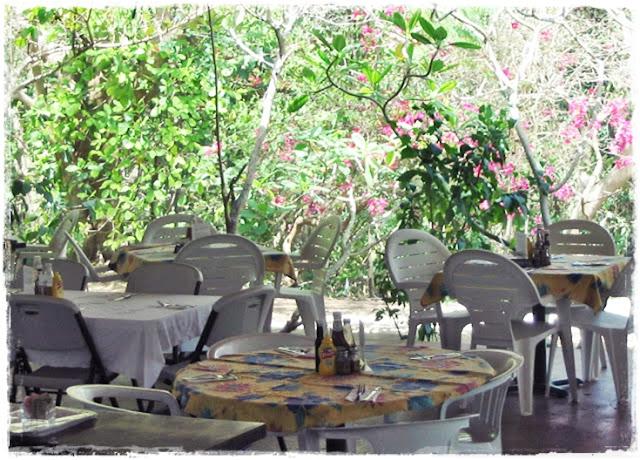tortola-restaurant