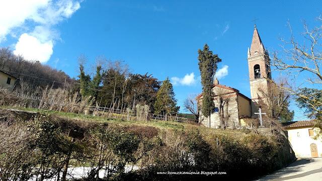 wiosna w Toskanii, fiore di san Giuseppe