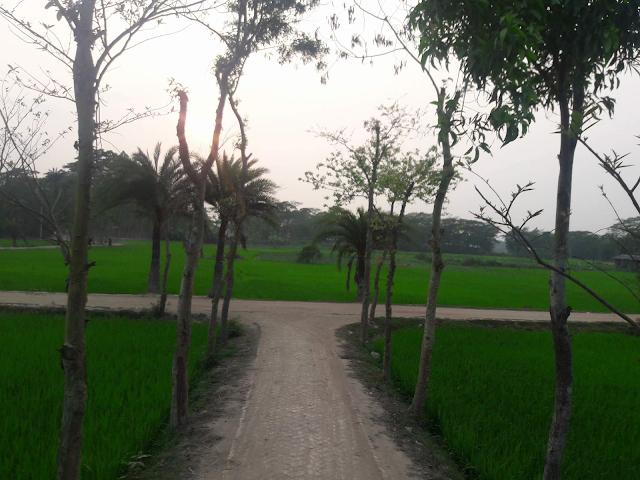Mon Kharap Pic