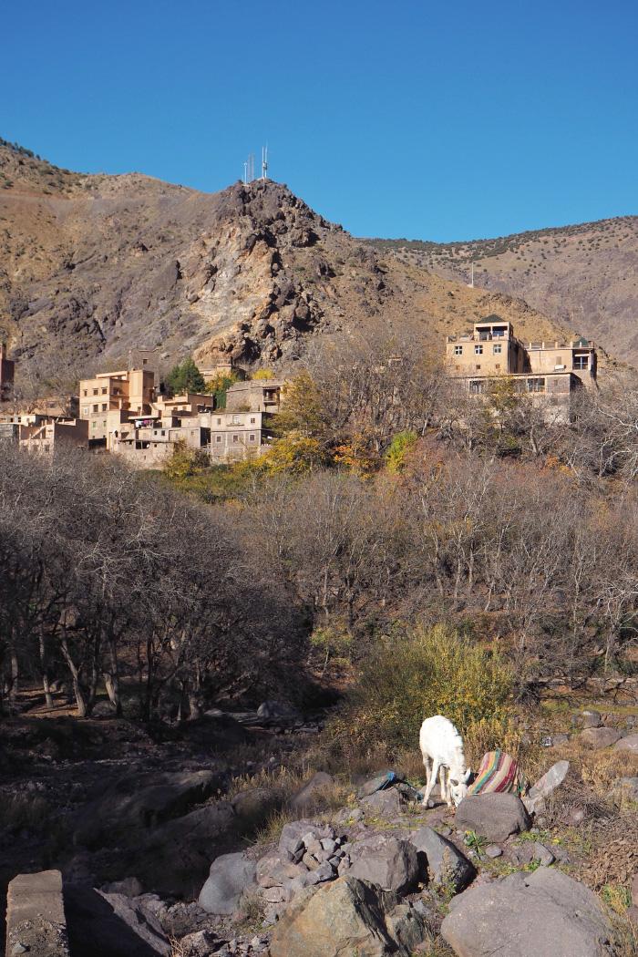 Village berbère dans le parc national du Toubkal au Maroc