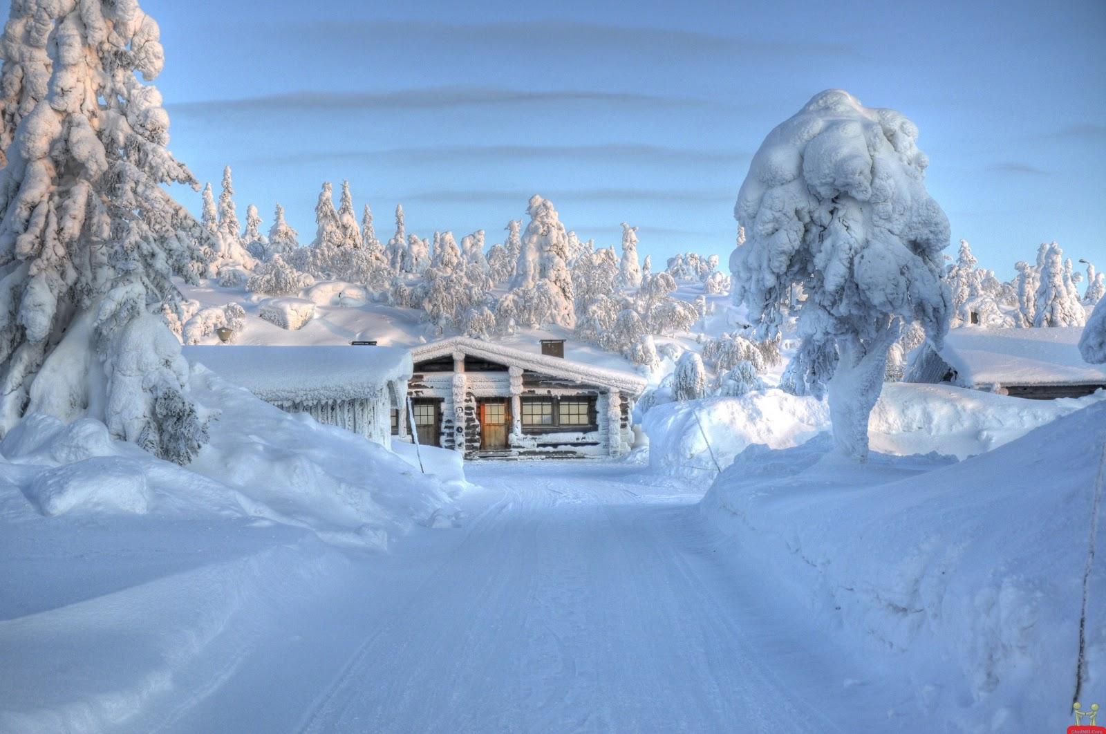 Free Christmas Falling Snow Wallpaper Travel Trip Journey Lapland Finland
