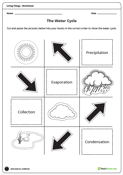 Being water wise junior primary science ideas teacher types then well start to examine the water cycle using this fantastic cut and paste diagram ccuart Image collections