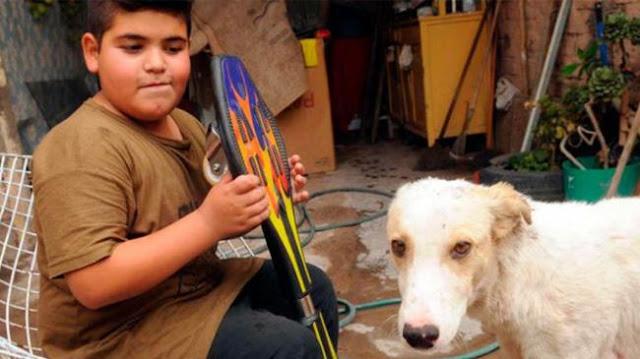 Vendió su patineta desde Facebook para ayudar a un perrito
