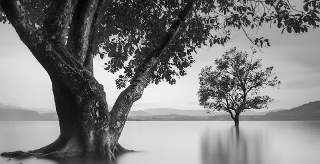 Menciptakan Mood Pada Foto Long Exposure Hitam Putih long exposure photographers  camera   night photography    settings    photography ideas   in daylight    tips   tutorial   foto hitam putih keren   foto hitam putih terbaik   fotografi hitam putih fotografer   membuat foto hitam putih dramatis di photoshop  black and white photography portraits   black and white pictures of flowers  black and white photography quotes   black and white photographers   black and white images hd  black and white photography techniques