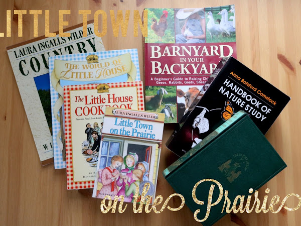 Little Town on the Prairie {Prairie Primer}