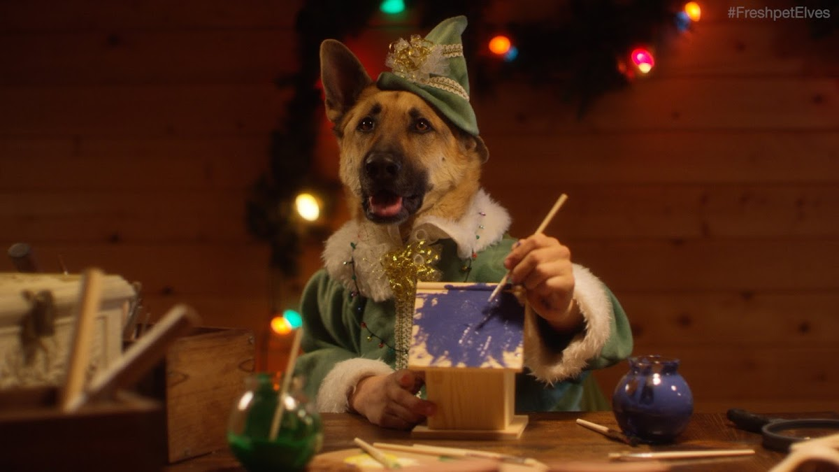 "Freshpet's Adorable New Christmas Commercial ""Santa's Elves"""