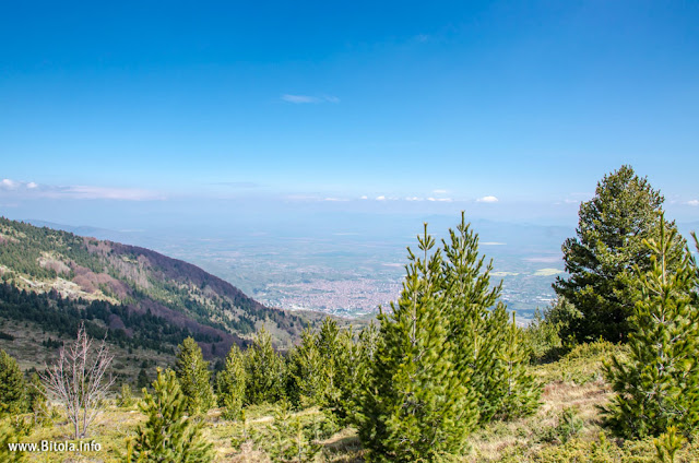Neolica Peak - Baba Mountain - Bitola, Macedonia