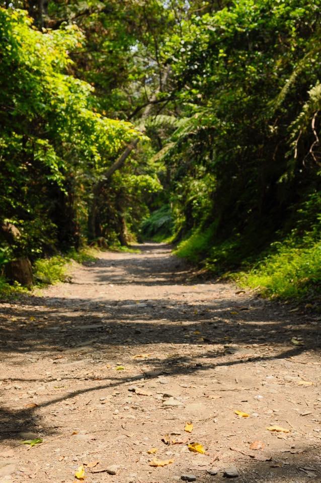 花蓮,秘境。卓溪。玉里。瓦拉米步道。瓦拉米。