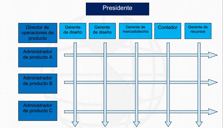 Ambientes Organizacionales Estructuras Por Proyecto Y