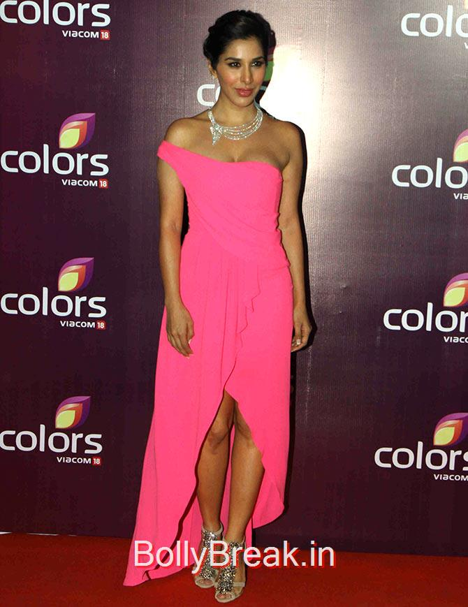 Sophie Choudry, Shamita, Guahar,Sophie Hot Pics at Colors leadership awards