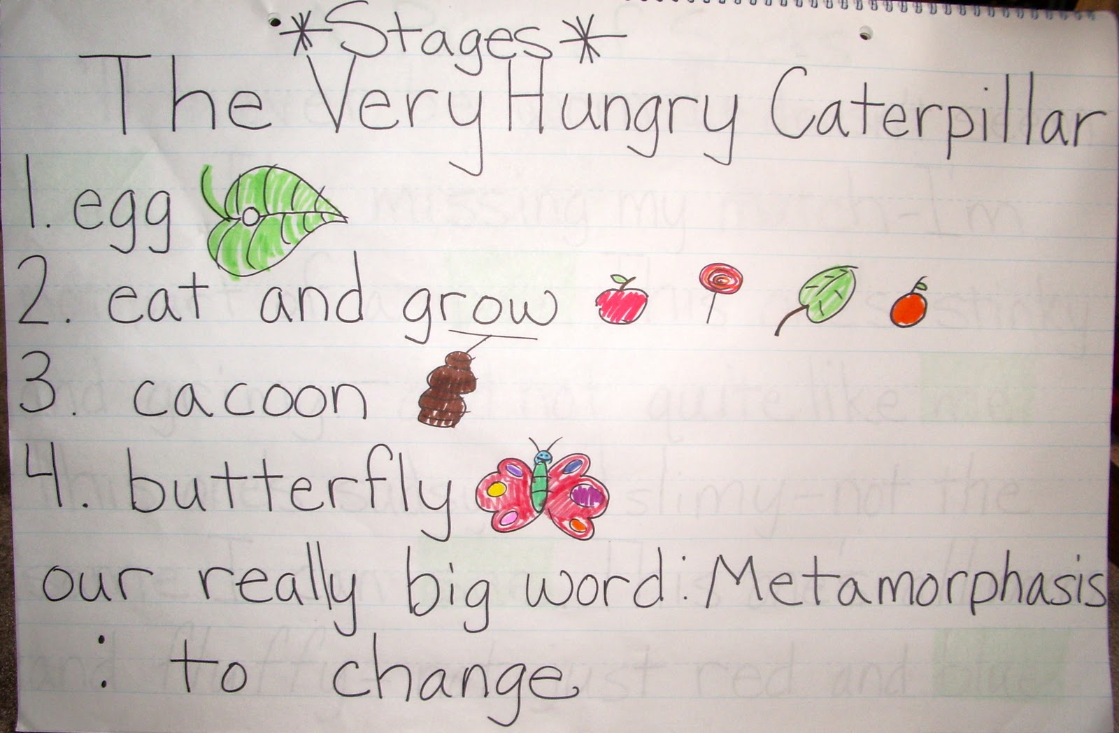 Babes In School Land Revisit The Very Hungry Caterpillar