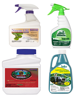 """choosing tips pesticides""best buying insecticides"",""best choose insecticides on amazon"""