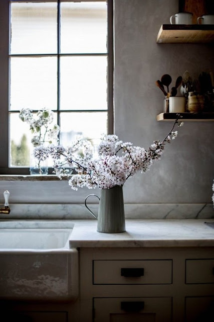 Flowers And Plants To Decorate The Kitchen 9
