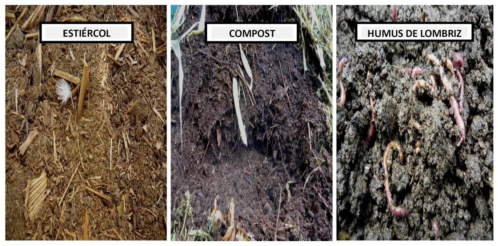Www cultivandoorganicoperu blogspot com org nico - Abono organico para plantas ...