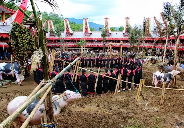 Tradisi Pemakaman di Museum Ne Gandeng Toroja