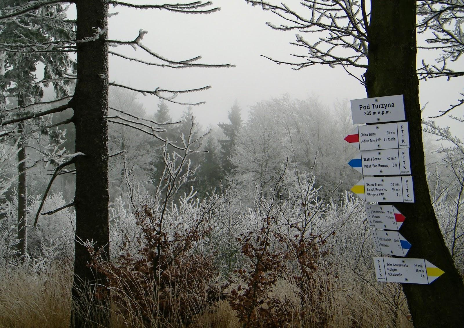 Andrzejówka Waligóra Góry Suche Korona Gór Polski