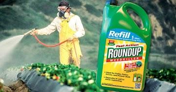 Monsanto é condenada a pagar US$ 80 milhões por conta do Roundup causar câncer