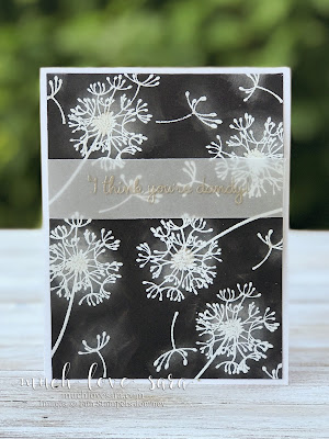 Simple White Dandelions scatter on a black background.  This card is great for any occasion.   Created with Dandelion Wishes Stamp Set.