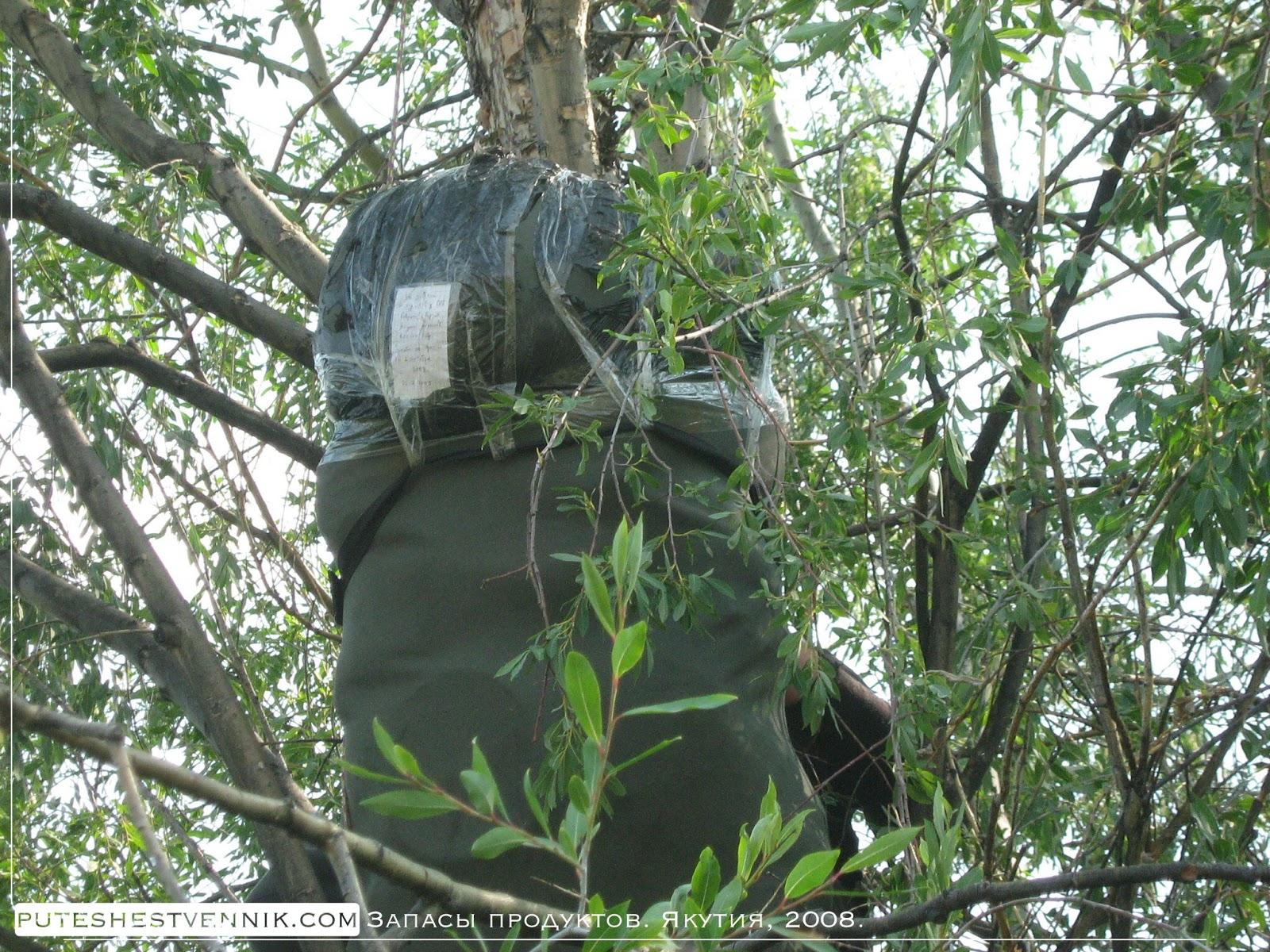 Рюкзак с запасами продуктов на дереве