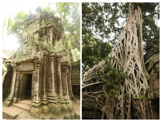 Tra-Prohm Temple is famous with roots grow on the roofs and over the temple at Siem Reap in Cambodia