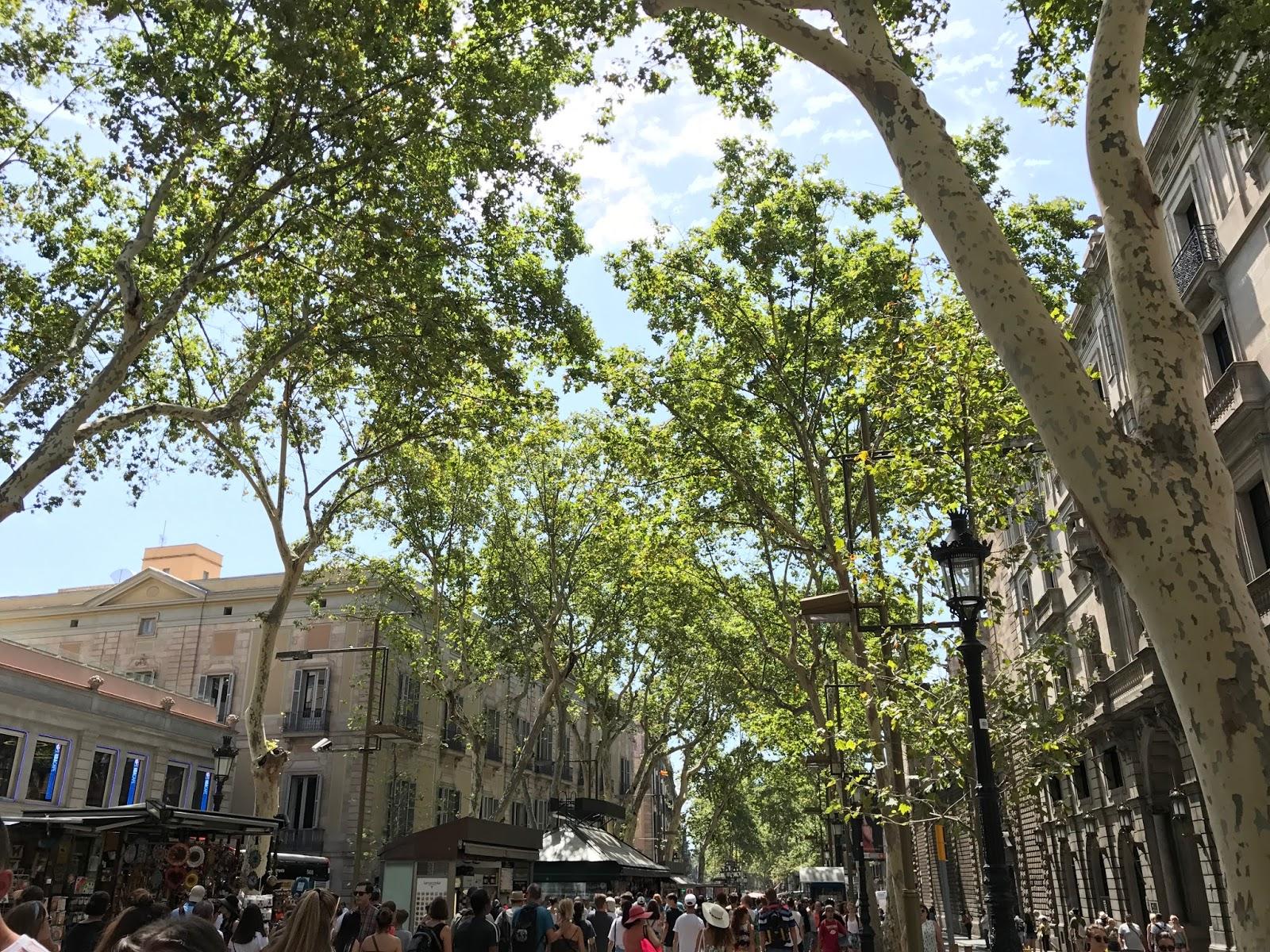 Barcelona 2017 | Travel