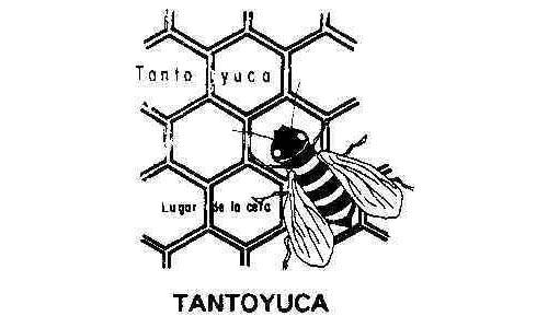 Municipio de Tantoyuca