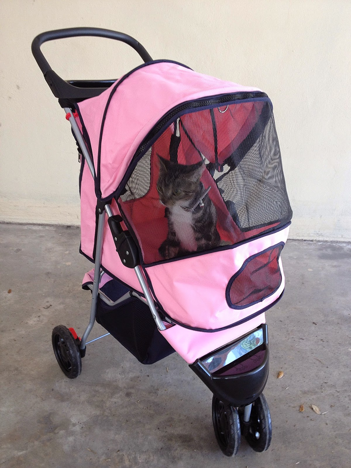 3 Cat Gift Ideas, Cats, Caturday, Cat Gifts, Pet Stroller, Cat Stroller