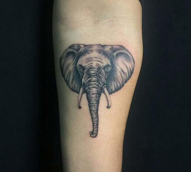 fil kafası dövmesi