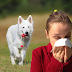 Alergias causadas por perros