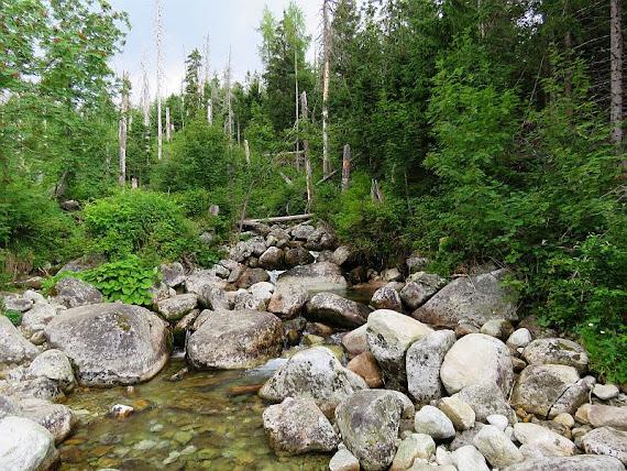 wielicki potok