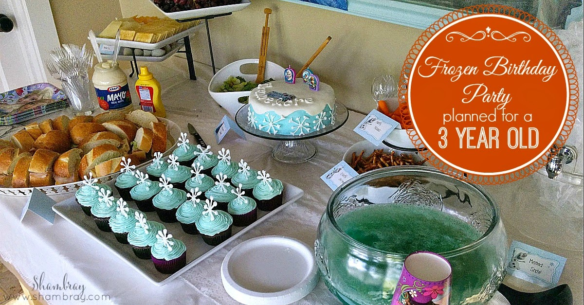 A Frozen Birthday Party For 3 Year Old