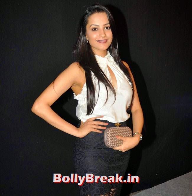 Anita Hassanandani, Star Parivaar Awards 2014 Red Carpet Pics