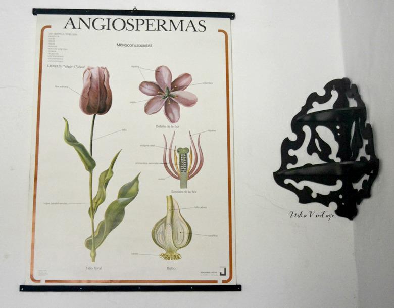 Otro diy básico con un mural de botánica, lo pondremos mucho mas bonito y de una manera muy sencilla