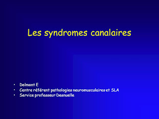 Les syndromes canalaires.pdf