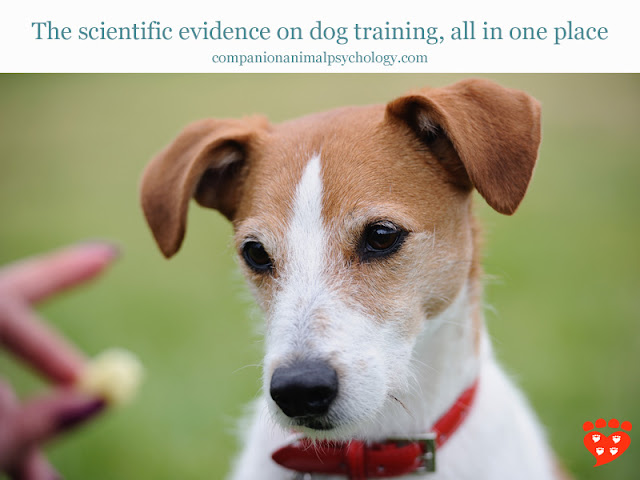 A Jack  Russell gets a treat - evidence-based dog training
