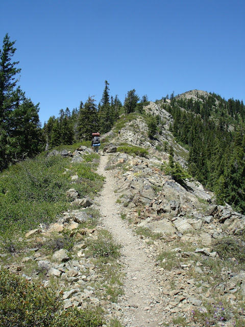 Pacific Crest Trail, Marble Mountain Wilderness, California
