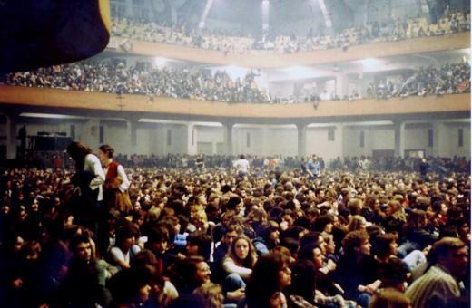 Pink Floyd Live In Frankfurt 1977 Vintage Everyday