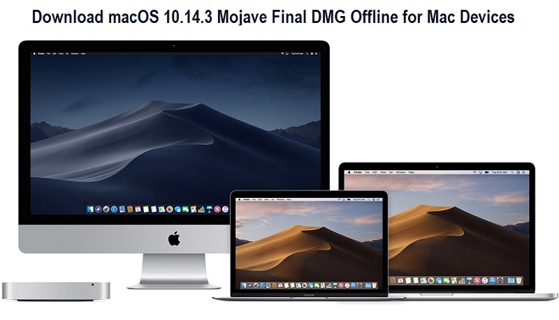 Download macOS 10 14 3 Mojave Final DMG Offline for Mac Devices