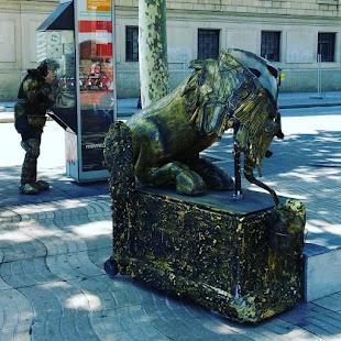 Mimo catalán hablando por teléfono