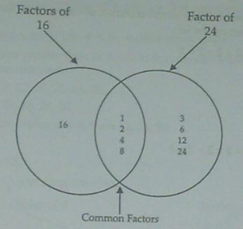 factors, multiples, gcf & lcm : factors, prime factorization, factorization  ~ explore your knowledge