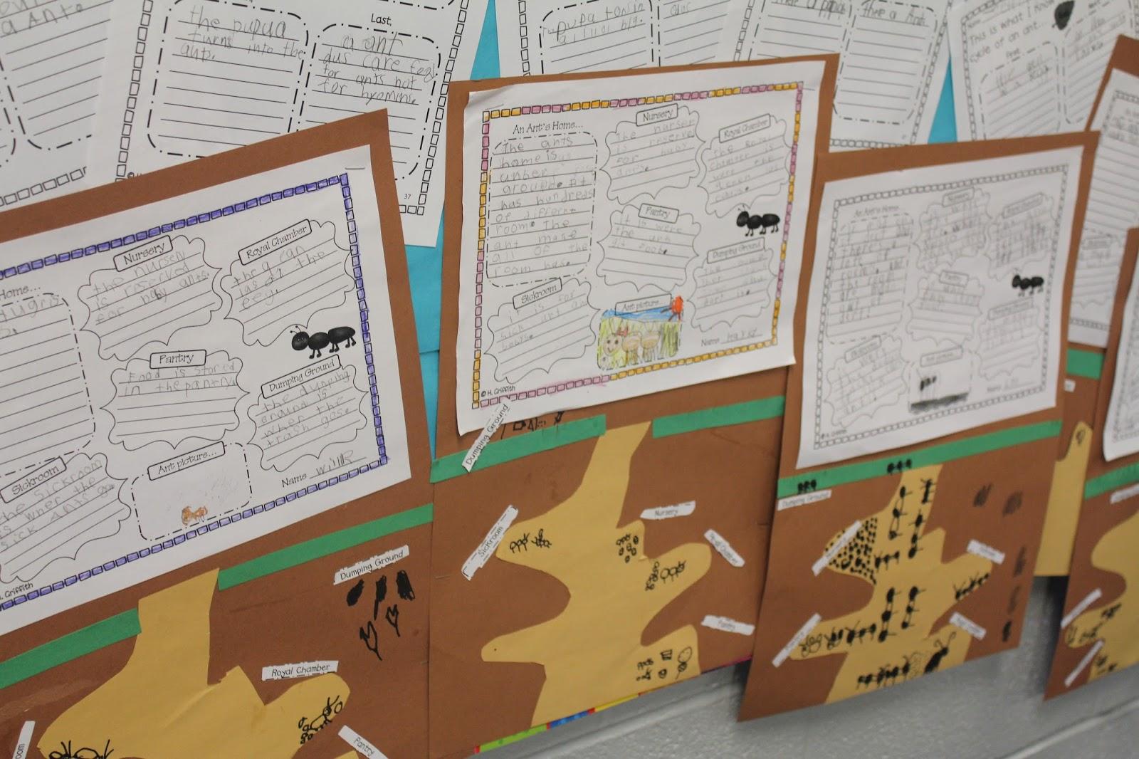 Science And Writing Fun Habitats Life Cycles