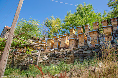 Beehives in village Gradeshnica, Mariovo - The best honey in Macedonia