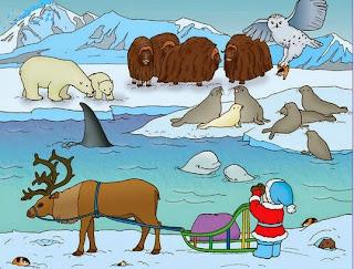 Картинки по запросу картинка животные севера и жарких стран