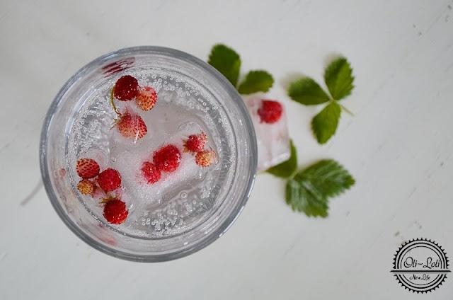 Owoce i zioła zaklęte w lodzie