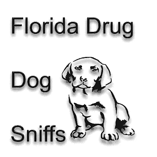 drug sniff, drug sniffing dog, methamphetamine, Drug Crimes,