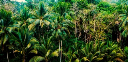 Burroughs új irányvonal a Tarzan könyvekben