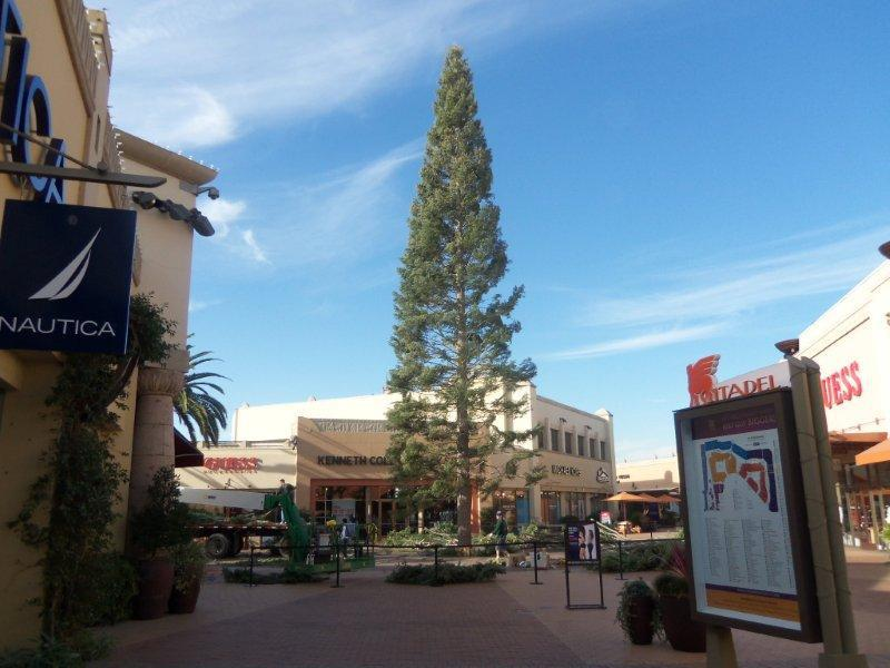 90 FT Christmas Tree Arrives At Citadel Outlets