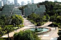 Tukang Taman Jakarta | Taman Menteng | www.ahli-tamanjakarta.com